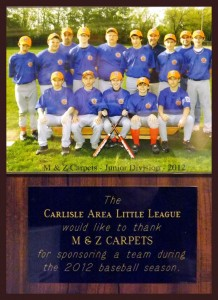The Carlisle Area Little league